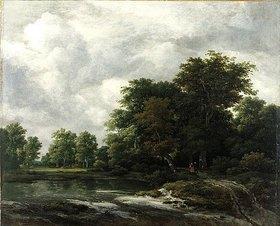 Jacob Isaacksz van Ruisdael: Wald nahe einem Weiher