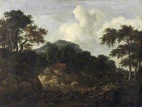 Jacob Isaacksz van Ruisdael: Waldlandschaft