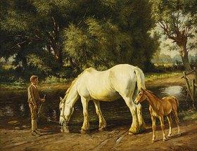 Wright Barker: Eine Stute mit ihrem Fohlen an einer Furt