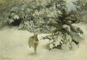 Bruno Andraes Liljefors: Ein Hase im Schnee