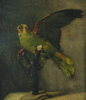 Vincent van Gogh: Der grüne Papagei