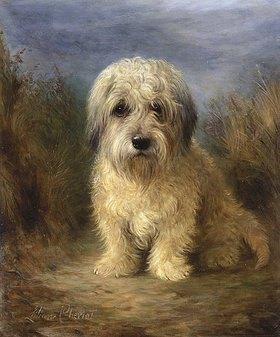 Lilian Cheviot: Dandie Dinmont Terrier