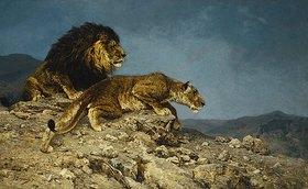 Julius Hugo Bergmann: Löwen auf dem Raubzuge