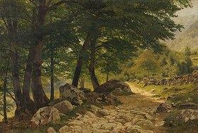 Eugen Dücker: Waldweg. Vor
