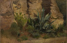 Johann Wilhelm Schirmer: Studie einer Agave, Yucca, eines Feigenkaktus und Ginsters, an der Stadtmauer in Rom