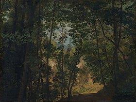 Johann Wilhelm Schirmer: Blick auf die große Terrasse des Heidelberger Schlosses