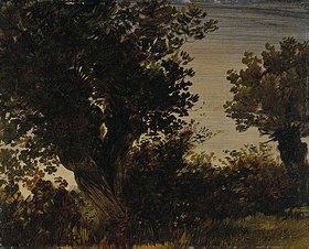 Wilhelm Busch: Zwei alte Weiden