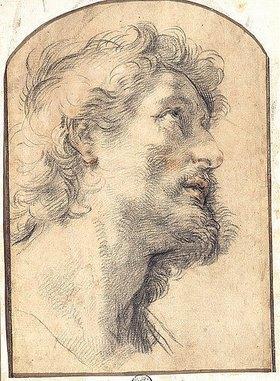 Benedetto Luti: Kopfstudie des Hl. Crispin