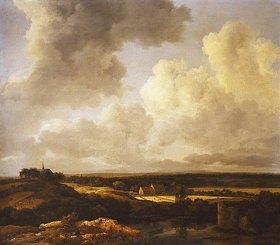 Jacob Isaacksz van Ruisdael: Weite Landschaft im Sommer