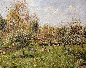 Camille Pissarro: Frühling in Eragny (Printemps à Eragny)