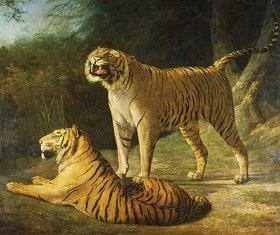 Jacques Laurent Agasse: Ein Tigerpaar in der 'Exeter Change Menagerie'