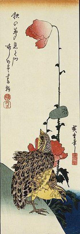 Utagawa Hiroshige: Wachtel und wilder Mohn