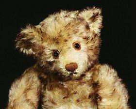 Nahaufnahme eines Steiff 'Dual' Mohair Teddybären