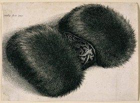 Wenzel Hollar: Muff mit Brokatband. 1647. Bezeichnet oben links: 'WHollar fecit. 1647', Pennington 1982, Nr