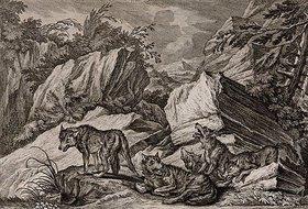 Johann Elias Ridinger: Wolfsrudel mit Jungen