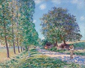 Alfred Sisley: Die Pappel-Allee bei Moret am Ufer der Loing. (L'allée des peupliers à Moret au bord du Loing.)