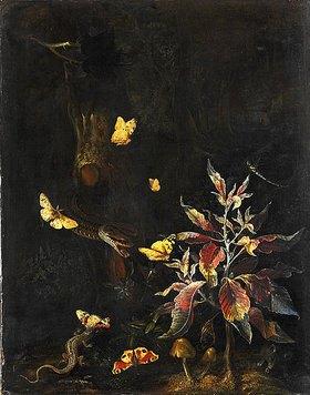 Otto Marseus van Schrieck: Schmetterlinge und Blumen