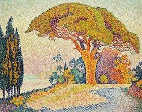 Paul Signac: Pinie bei Bertraud, Saint-Tropez (Provence). / Le Pin de Bertaud, Saint-Tropez (Provence)
