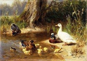 Carl Jutz: Enten an einem Teichufer