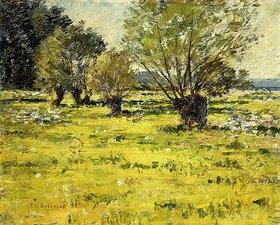 Theodore Robinson: Frühling