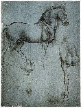 Leonardo da Vinci: Studie eines Pferdes