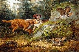 Arthur Fitzwilliam Tait: Aufgescheucht: Jagd auf Kragenhühner