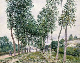 Alfred Sisley: Pappelallee am Ufer des Loing