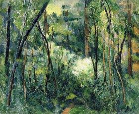 Paul Cézanne: Unterholz (Sous-bois)