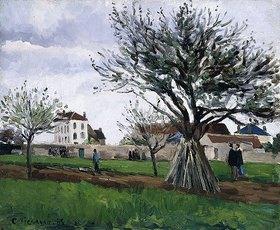 Camille Pissarro: Apfelbäume in Pontoise (Das Haus von Vater Gallien)