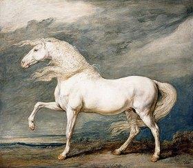 James Ward: Adonis, das bevorzugte Streitross von König Georg III