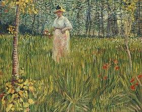 Vincent van Gogh: Frau in einem Garten (Femme dans un Jardin)