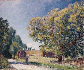 Alfred Sisley: Eine Lichtung in der Nähe eines Waldes (Autour de la forêt, une clairière)