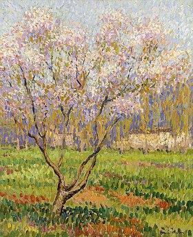 Henri Martin: Blühende Apfelbäume (Pommiers en Fleurs)