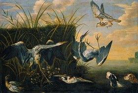Frans Snyders: Ein Falke greift Reiher an(Reiherbeitze)