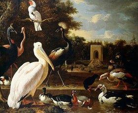 Melchior d' Hondecoeter: Verschiedene Vogelarten an einem Teich in einem Park