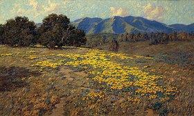 Granville Redmond: Kalifornischer Mohn (California Poppies)