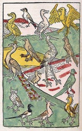 Deutsch: Verschiedene Vogelarten in einer Landschaft. Aus 'Buch der Natur', von Konrad von Megenberg (um 1309-1374). Gedruckt von Johann Schönsperger, Augsburg