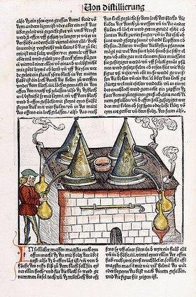Hieronymus Brunschwig: Aus 'Kleines Destillierbuch' (Liber de arte distillandi de simplicibus). Straßburg