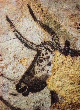 Unbekannter Künstler: Höhle von Lascaux. Kopf des Vierten Stieres. Großer Saal, rechte Wand. Ca. 17.000 v. Chr. Gesamtansicht unter Bild-Nr