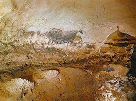 Unbekannter Künstler: Höhle von Lascaux. Schiff: Gruppe der schwarzen Kuh. Ca. 17.000 v. Chr