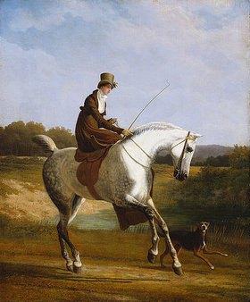 Jacques Laurent Agasse: Frau Cazenove auf einem grauen Jagdpferd