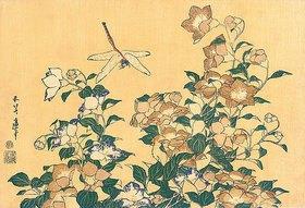 Katsushika Hokusai: Chinesische Glockenblume und Libelle. Aus 'Die große Blumenserie'
