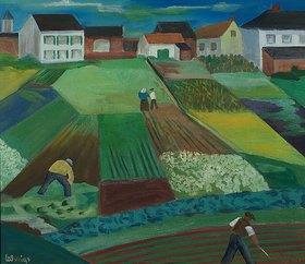 Peter Ludwigs: Felder in Hamm  (Kappeshamm)