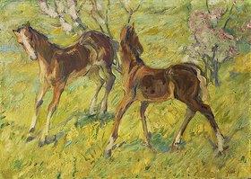 Franz Marc: Fohlen auf der Weide