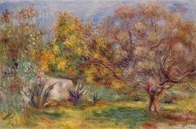Auguste Renoir: Garten mit Olivenbäumen (Jardin d'oliviers)