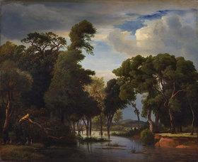 Johann Wilhelm Schirmer: Sumpflandschaft