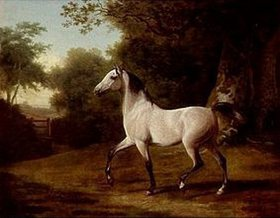 Jacques Laurent Agasse: Apfelschimmel (Araber) in Waldlandschaft