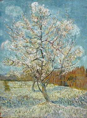 Vincent van Gogh: Blühender Pfirsichbaum (rosa). Arles, April-Mai