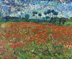 Vincent van Gogh: Mohnfeld