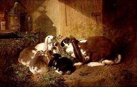 John Frederick Herring d.Ä.: Kaninchenfamilie